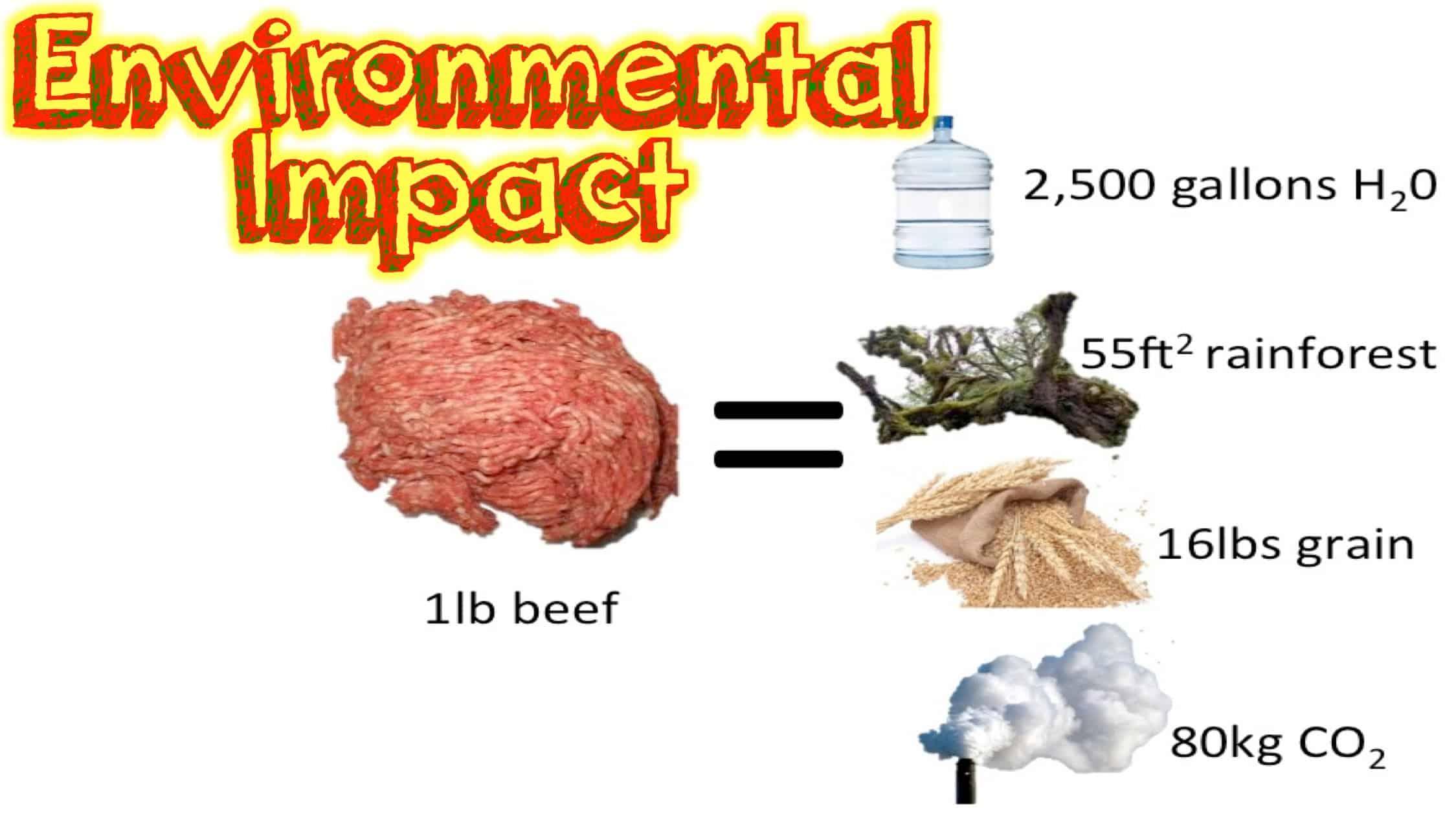 environmental impacts of vegan diet