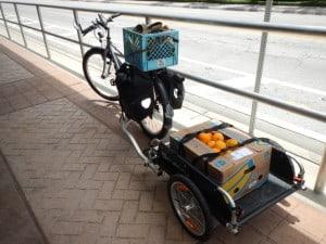 Vegan Grocery Haul On Bik Car Free Living