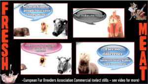 European Fur Breeders Association Commercial: Animals, New Sexy Movie Stars On The Farm