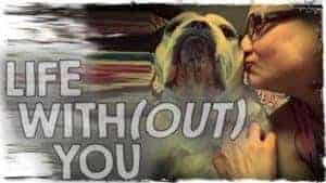 Life Without You The Story of Ooby The Bulldog